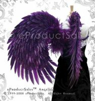 Angelica feather angel wings by eProductSales