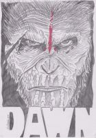 Ceaser Dawn Of The Planet Of The Apes by samrogers