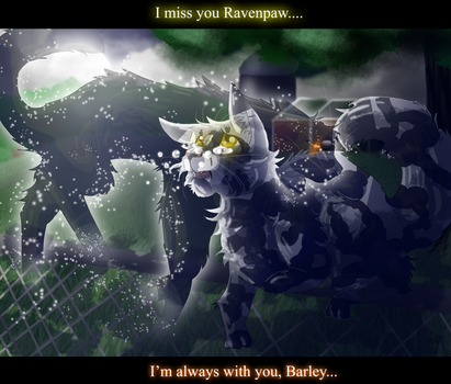 Ravenpaw and Barley (Warrior Cats) by WarriorCat3042