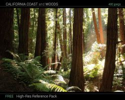 California Coast and Woods Reference Pack by jonathanguzi