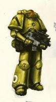 Imperial Fists Space Marine by MasterAlighieri