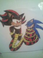 Naga Shadow and Sonic 3 by princessshannon07