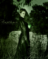 Rosethorn by perididdle
