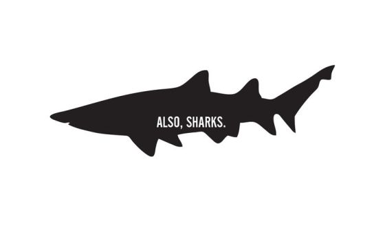 Also, Sharks. Wallpaper by christhestringer