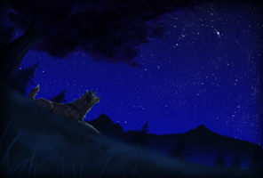Star Gazing by Kairi292