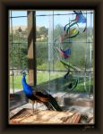 Peacock in Stain Glass Chapel by Goldey