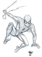 SPIDER-MAN sketch by Wieringo