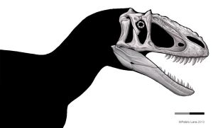 Yutyrannus shaded skull by pabluratops