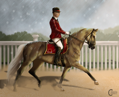Training Clinic Event - Dressage by FeatherCandy