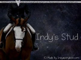 Indys Horse Picture by Recreation-09