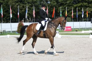 Outdoor Brabant 62 by chronically