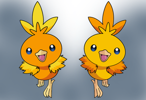 torchic shiny reflection by Thunderwest