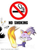 NO SMOKING 2 by WittNV