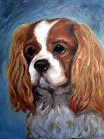 Cavalier King Charles Spaniel by PaolaCamberti