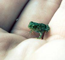 In my hand by RainbowCartilage