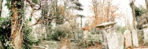 Abney Park Panoramic by angelwillz