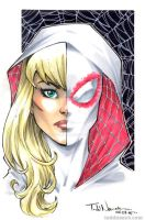 Spider-Gwen by ToddNauck
