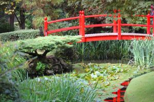 Chinese Garden in Ireland by Frani54