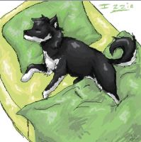 She Sleeps on my Pillow by Kazaie