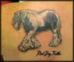 Horse tattoo by Reddogtattoo