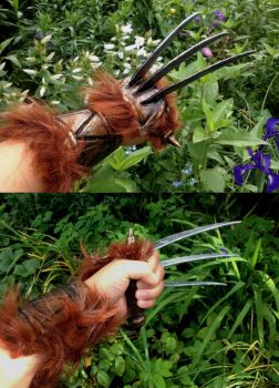 Red XIII (Final Fantasy VII): Claws, finished by EbonyEagle