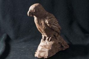 Clay Parrot by flamechic