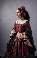 Tudor stock 4 by DanielleFioreModel