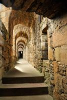Linlithgow Palace walkway 1 by wildplaces