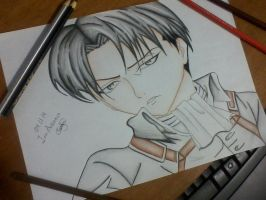 Levi Rivaille by Karol163