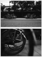 Bicycles by Sidyk