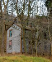 House in the Woods 2 by GlassHouse-1