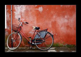 cycle by cei-