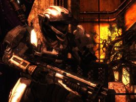Halo Reach: Back in Hell by purpledragon104