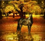 Autumn by Ruptured-Tranquility