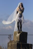 Stock - Corpse Bride fantasy burton flying veil 2 by S-T-A-R-gazer