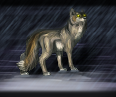 Stand in the Rain by Forever-Wolfy