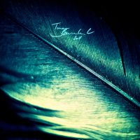 Refracting Feather by CayaStrife