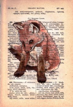 A Page on a Fox by WeileAsh