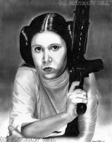 Princess Leia by Wanted75