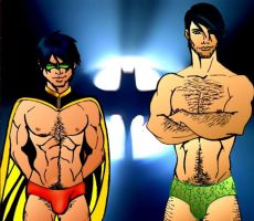 ROBIN AND NIGHTWING by Dennis80