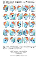 Rainbowdash Facial Expressions. by Mennorino