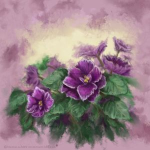 African Violets by ManiacalMew