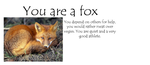 What animal Are You: Quiz Answered by SonicSATAMxSEGAsally