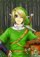Link by Black-Orochimaru