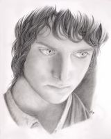 Frodo by Aniviel
