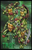 Turtles combined... by JLWarner