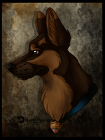 Dog!Grayson by NightMagican