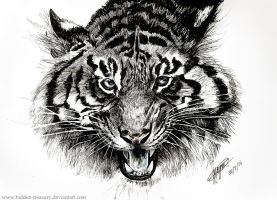 Tiger- drawn with pen by Hidden-Treasury