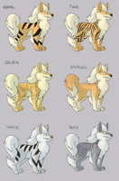 Arcanine Color Variations by pkstarst0rm