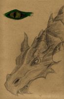 Dragon by mlatimerridley